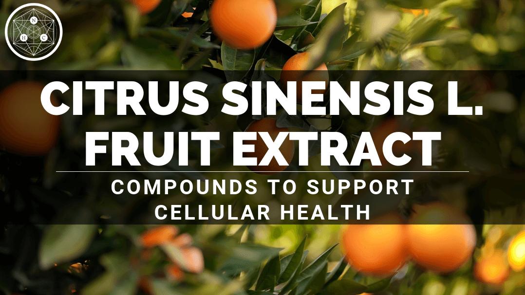Citrus sinensis L. Fruit Extract: Sources and Benefits