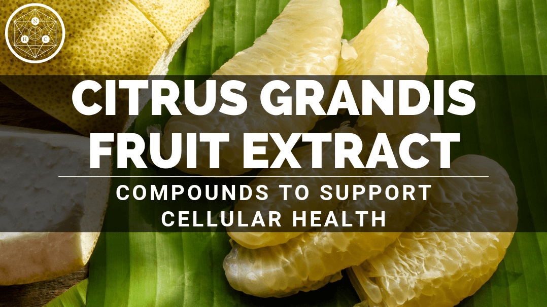 Citrus grandis Fruit Extract: Sources And Benefits