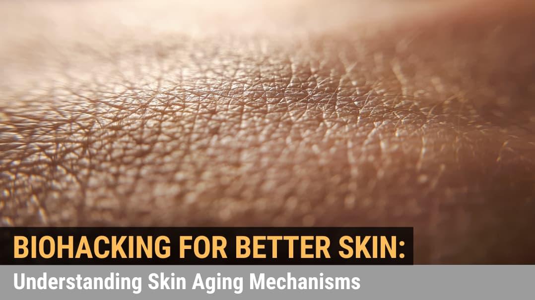 Biohacking for Better Skin: Understanding Skin Aging Mechanisms