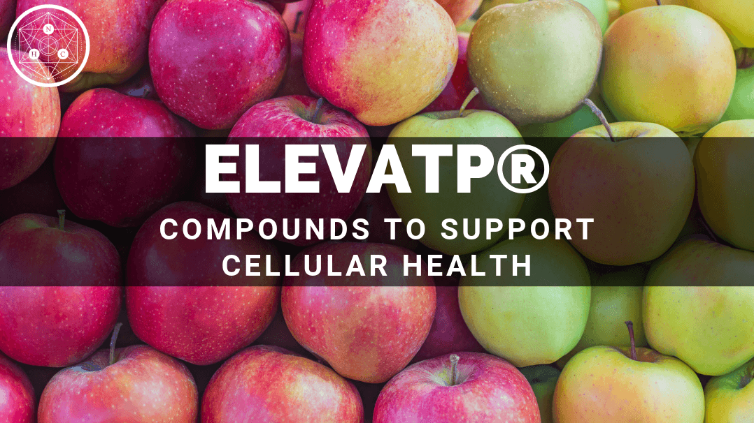 What is elevATP® Ancient Peat and Apple Fruit Extract?