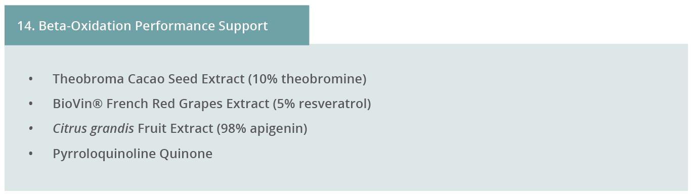 Image 14. Beta-Oxidation Performance Support