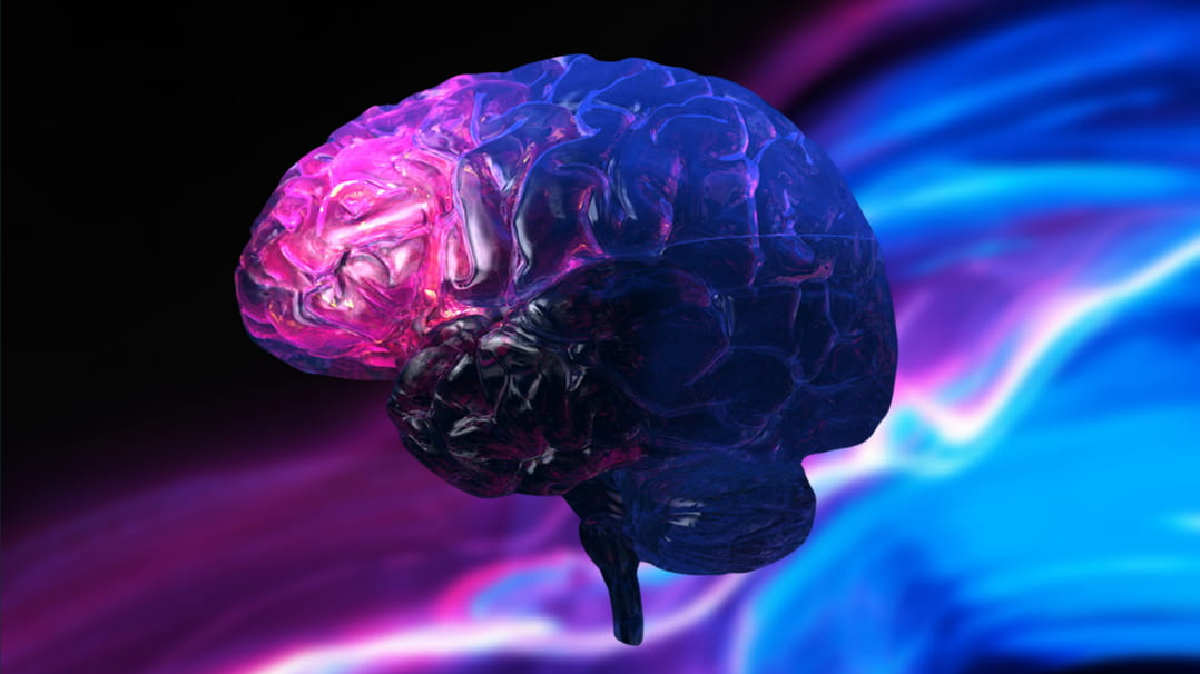 The Ultimate Neurohacking List for Energy, Cognition & Longevity