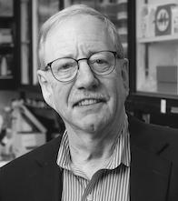 Steven Austad, Ph.D.