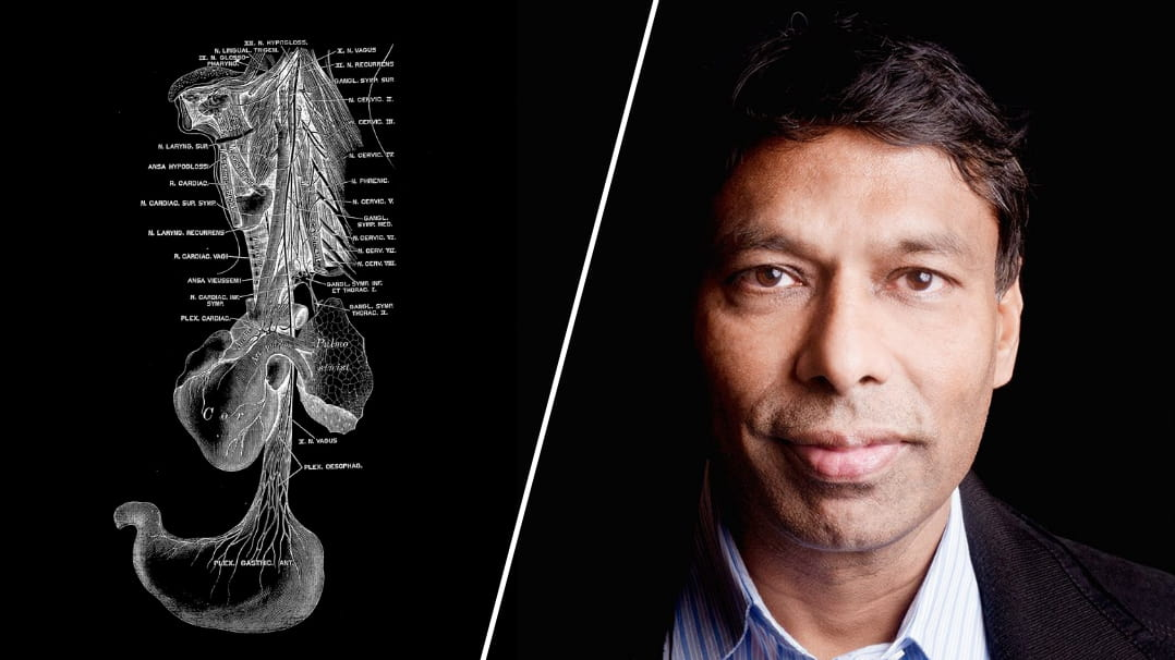 How Our Second Brain Affects Mood, Immune Function, and Cognition: A Q&A With Naveen Jain