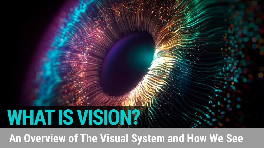 What is Vision?