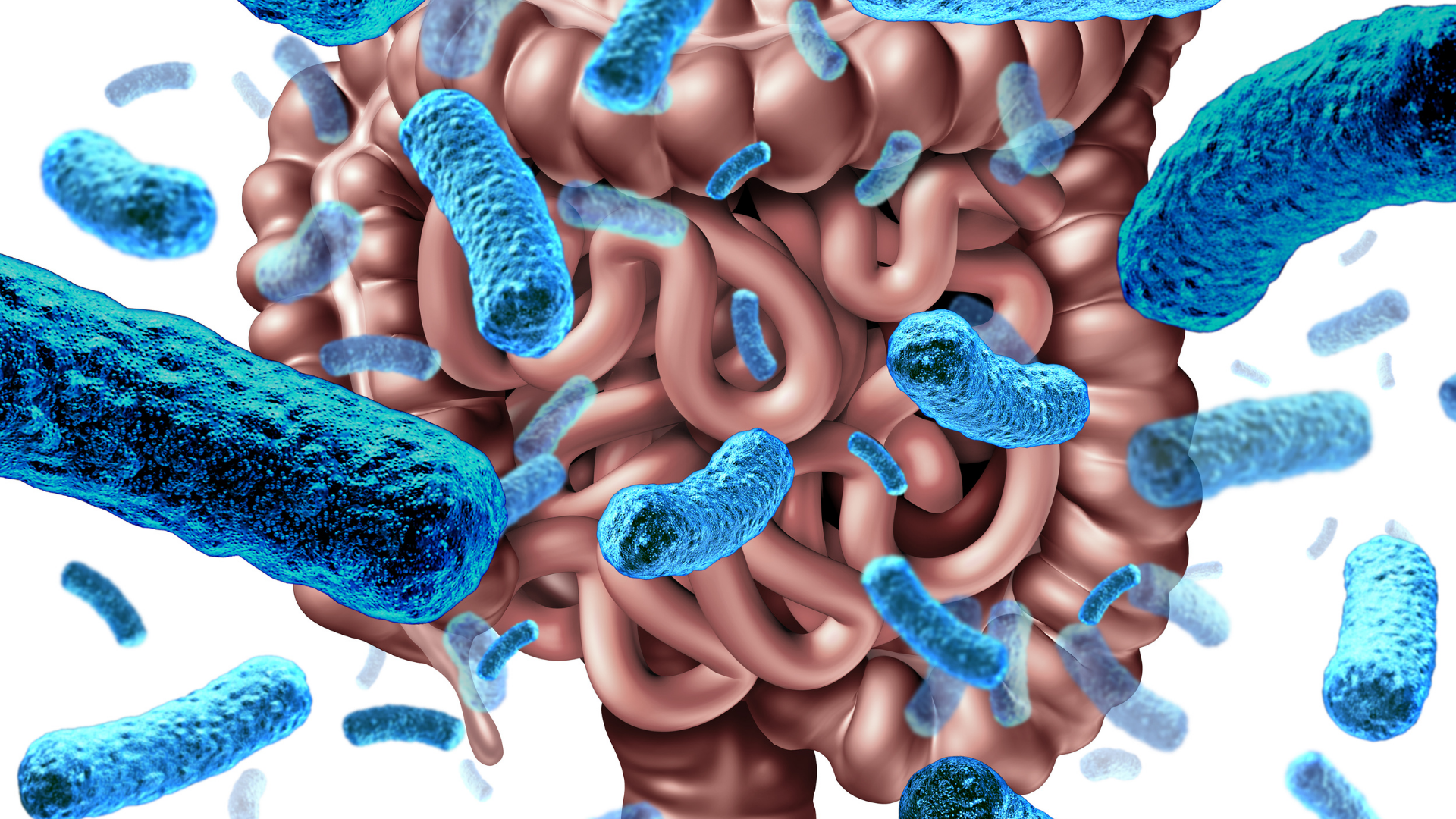 Using Probiotics to Improve Gut-Brain Connection - An Interview with Dr. Michael Ruscio