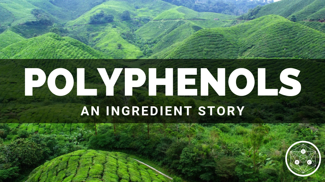 Polyphenols: Sources and Benefits