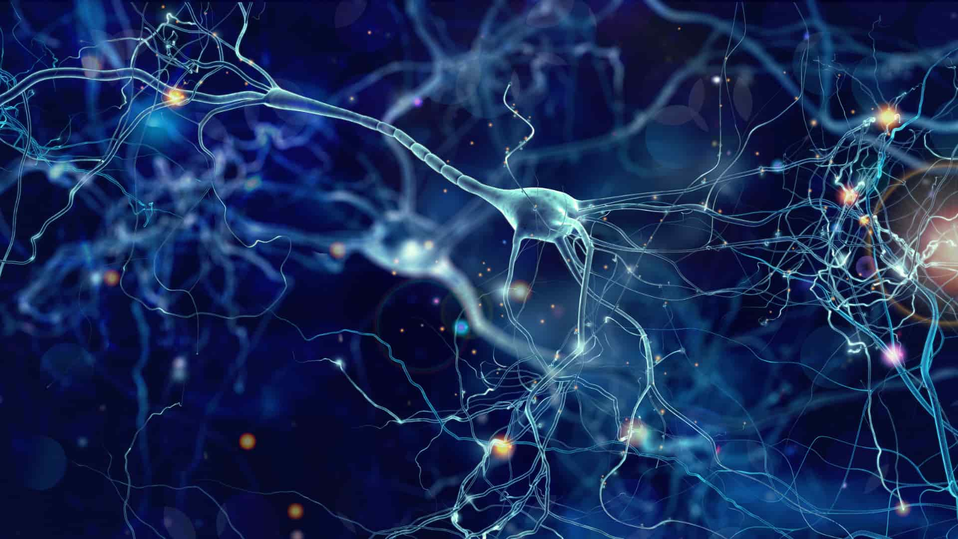 The Power of Neuroplasticity - An Interview with Brant Cortright, Ph.D.