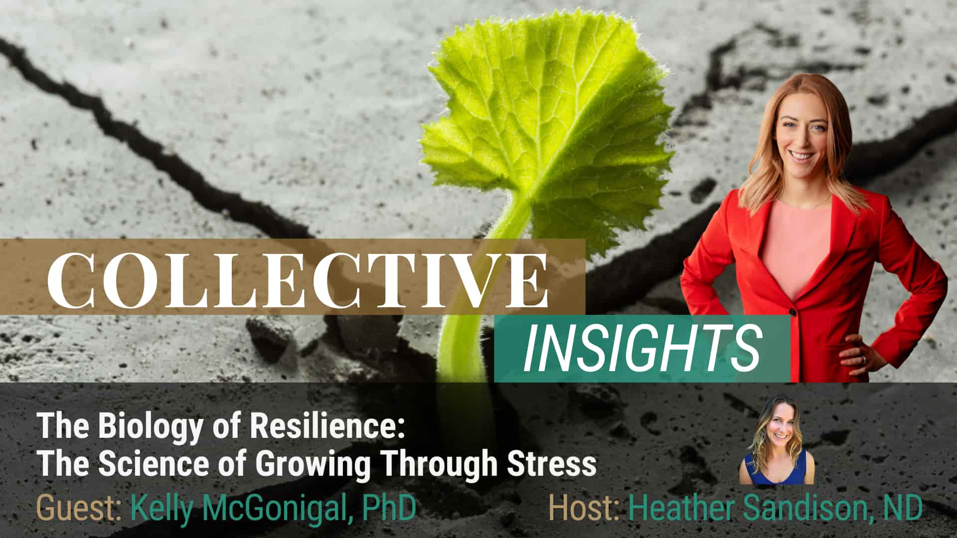 The Science of Resilience - Kelly McGonigal, Ph.D. - Mind Body