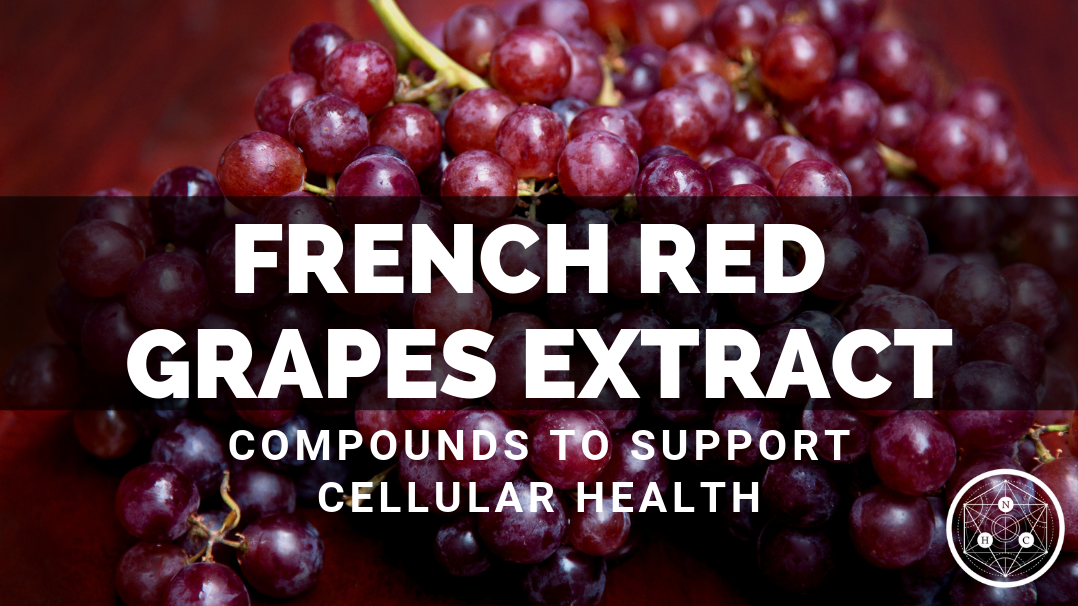 French Red Grapes Extract: Sources and Benefits