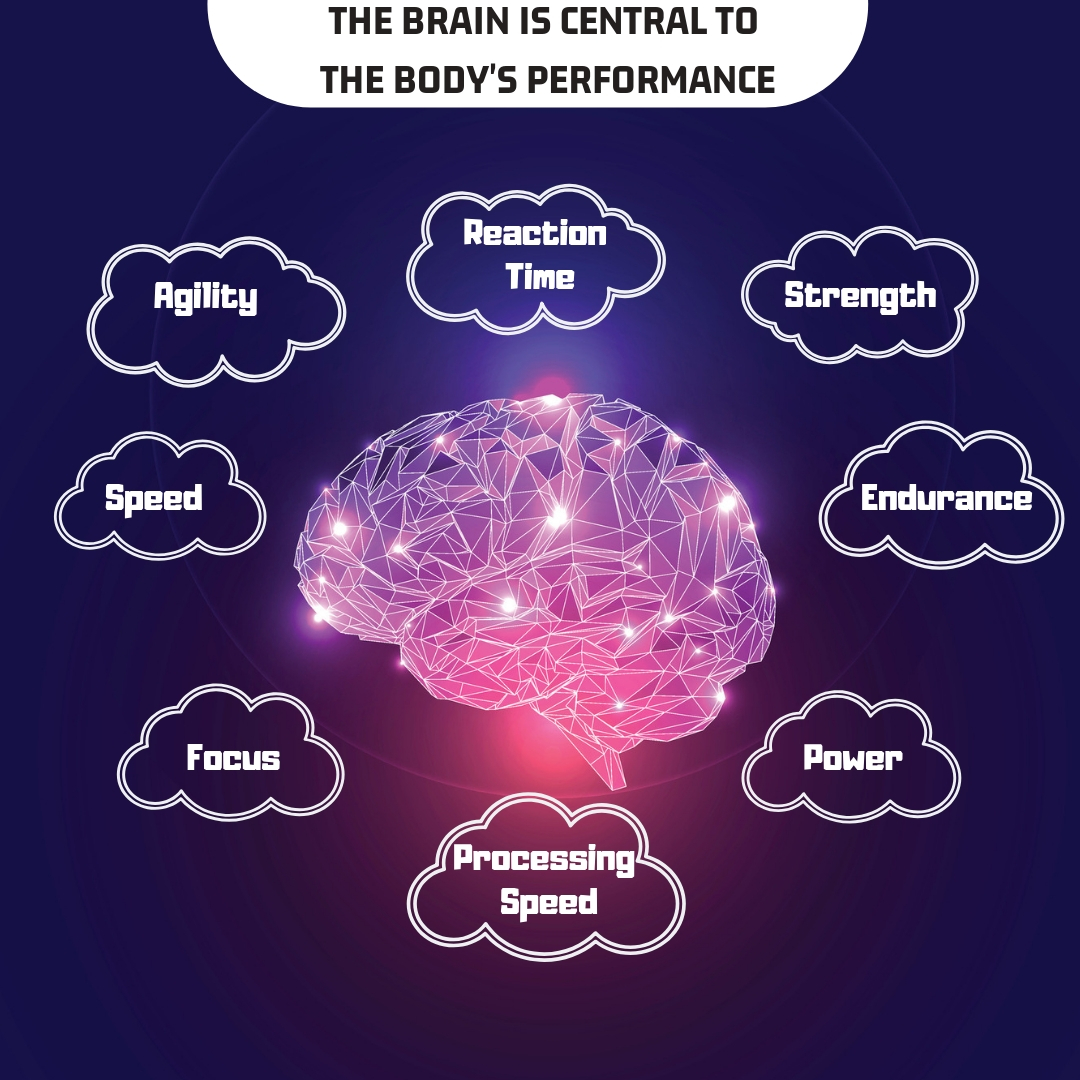 Science Facts Exercise: WORKOUT MOTIVATION: THE SCIENCE OF THE BRAIN'S ROLE IN