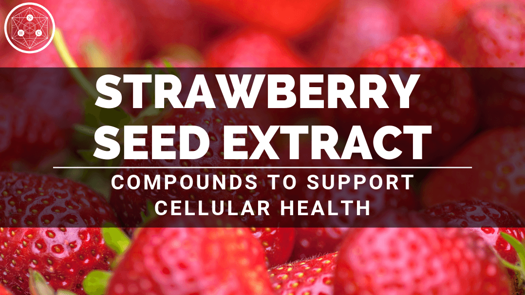 Benefits of Strawberry Seed Extract