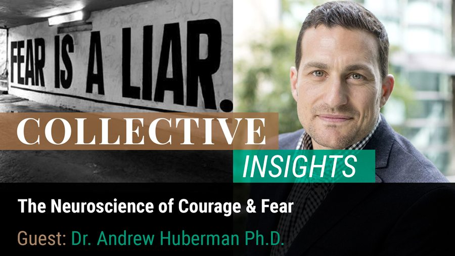 The Neuroscience of Courage and Fear