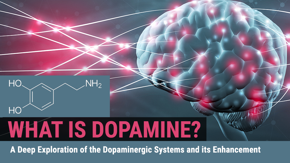 What is Dopamine? A Deep Exploration of the Dopaminergic Systems and its Enhancement