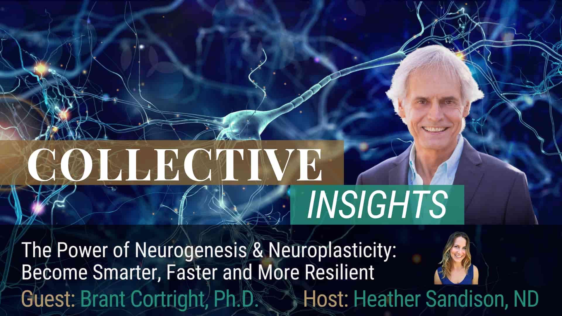 The Science of Neurogenesis - Brant Cortright, Ph.D. - Brain